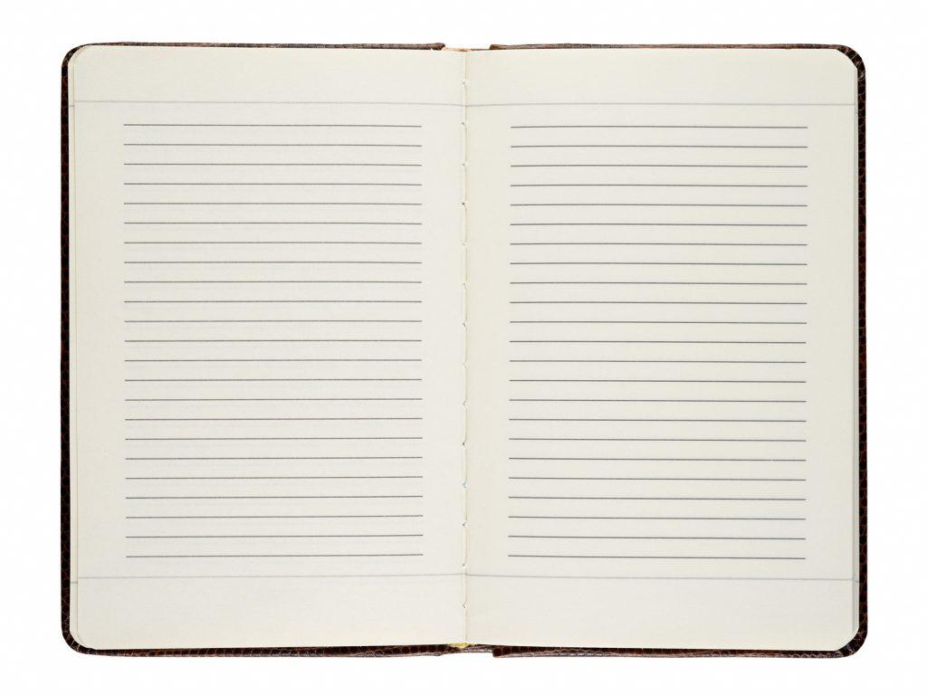 Lacrosse Goalie Journal